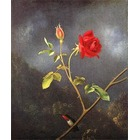 Reproduction peintre Heade045