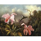 Vente reproduction tableaux Heade039