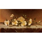 Copie de tableaux de maitre Heade010