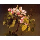 Copie tableaux de maitre Heade002
