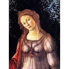 Vente reproduction tableaux Botticelli006
